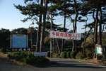 091223sumekizaki.JPG